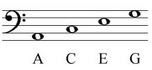 notes in bass clef
