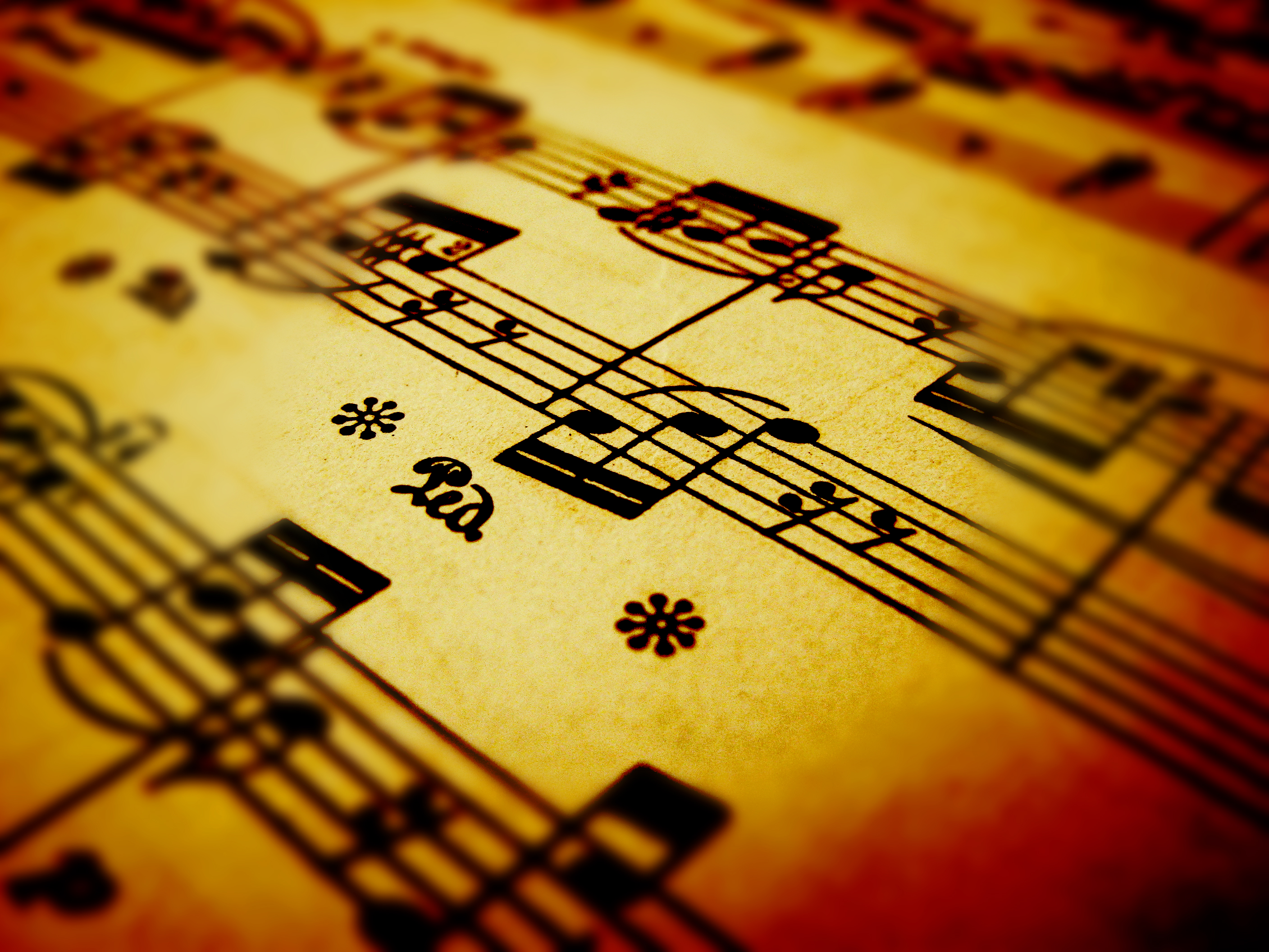 The Secret Solution To Improving Your Music Reading Skills: Focused ...