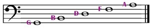 bass clef line notes